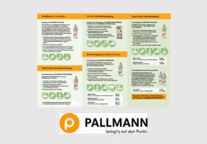 pdf_Pallmann2